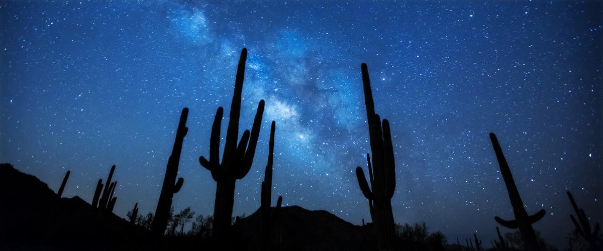 Wir holen Ihnen die Sterne vom Himmel